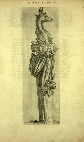 005-Girafa-Joseph Boillot 1592
