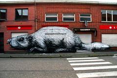 street art Doel - Roa (_Kriebel_) Tags: street streetart art graffiti belgique belgië roa doel kriebel oostvlaanderen roabot 12sept2009