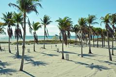 Crandon Park, Cabana Area