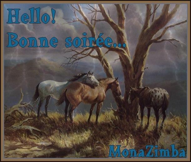http://farm4.static.flickr.com/3603/3304031078_64f6e7df57_o.jpg