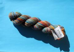 IMG_6196 (botaneige) Tags: tricot koigu laine kppm