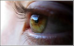 Basque Country from a eye (Ruben Alvarez Bediaga) Tags: mountain eye canon ojo paisaje powershot bizkaia durango euskalherria euskadi vizcaya basquecountry paisvasco baskenland montes begia