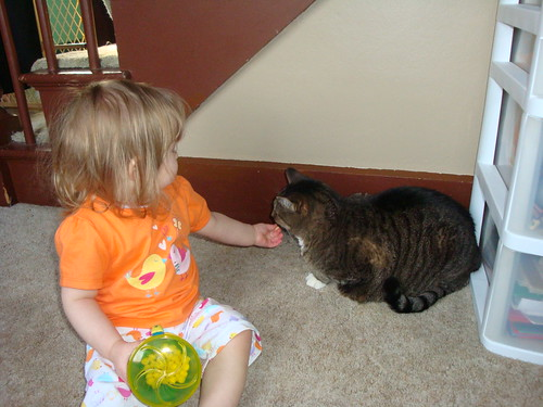 Clover shares with Phoebe