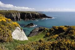 St Non's Bay (zenith9) Tags: uk sea vacation holiday wales pembroke bay coast spring europe path walk cliffs trail coastal footpath pembrokeshire stnon stnons