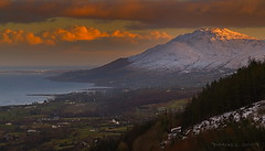 Slieve Foy. Carlingford ireland (DMull) Tags: trees ireland sky mountain clouds nikon lough view border louth carlingford nireland armagh mountainrange omeath warrenpoint newry slievefoy platinumphoto theunforgettablepictures platinumheartaward dmull carlingfordloch