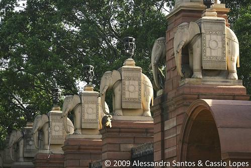 Rajpath IMG_0259