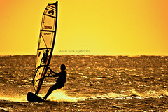 Sailboats (ALI AL-MUADDY- ALTAMIMI/  ) Tags: gold waves wind sailboats