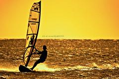 Sailboats (ALI AL-MUADDY- ALTAMIMI/عÙ٠آ٠Ùعد) Tags: gold waves wind sailboats علي ال شراع التميمي قارب سلويت معدي