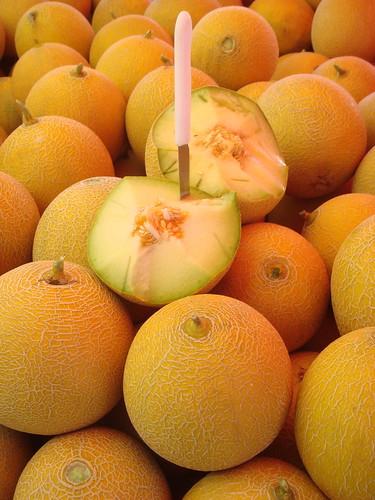 melon-peponi