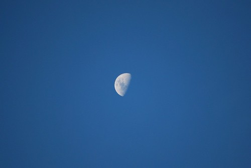 The moon in a clear sky