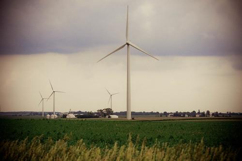 Windfarm4