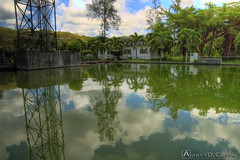 Nature Park Pond (adcristal) Tags: park reflection nature water animal zoo pond farm philippines nikond70s crocodile croc hdr naturepark puertoprincesa palawan crocodilefarm barangay irawan tamron1750mmf28 palawanwildliferescueandconservationcenter