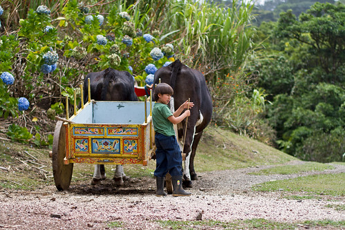 El Trapiche, Monteverde