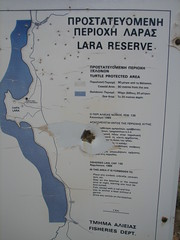 Lara Reserve pockmarked with bullets