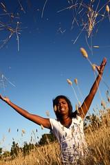 Good bye summer (tommycorra) Tags: autumn summer sky sexy love boys girl grass tom bush country australian nsw canberra kiri act corra 2620 i phalaris wamboin