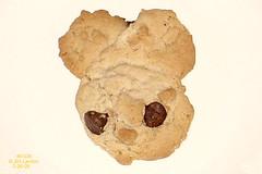 Animal Cookie (thegreatlandoni) Tags: usa colorado cookie sony denver adobephotodeluxe highlandsranch landoni mvccd1000 thegreatlandoni jimlandon