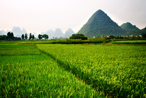 Yangshuo Postcards 05