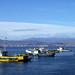 Serena Boats - Chile Study Abroad