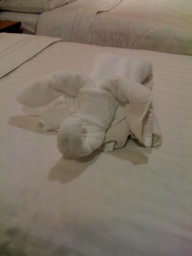 Cruise Elephant Two