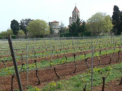 vignes et monastère.jpg