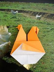 galinha dos ovos de ouro