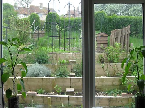 terrace 090501
