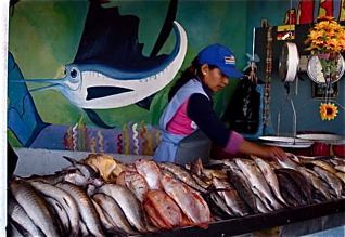 ecuador-food-prices