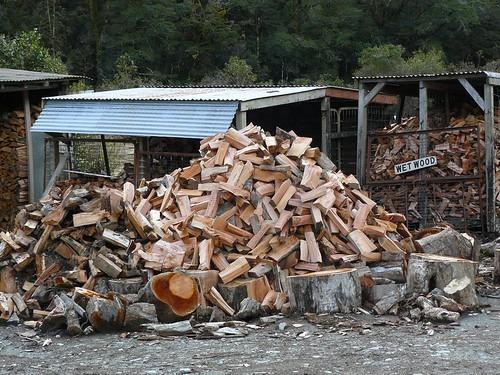 Nouvelle Zelande 2008 : bois