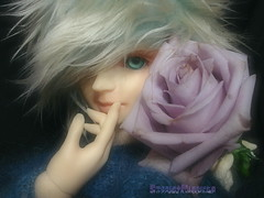(Zhion) and Ocean song rose (borometz) Tags: color art rose doll vampire gothic lavender fantasy bjd    custom volks 13 oceansong  sakaki balljointdoll    60cm kyotenshi    zhion