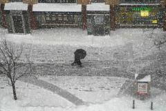 NYC00734 (Glenn Losack, M.D.) Tags: nyc newyorkcity usa buildings river manhattan 4 homeless 911 bridges july parades tattoos east beatles montauk protests mimes beggars streetphotographer glosack worldtradeattacks nyscenics