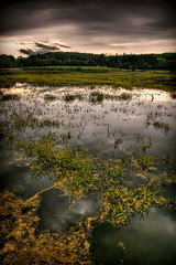 Vyplatil pond (StafbulCZ) Tags: light nature clouds canon reflections landscape eos pond paradise colours czech dramatic level czechrepublic tamron bohemian hdr jarek gettyimages jicin czechparadise krajina mraky obloha ceskyraj cesko echy esko jin tamron1750 eos400d canoneos400d eskrj jicinsko ostruzno lucisart3 stafbulcz jinsko ostruno jaroslavvondracek