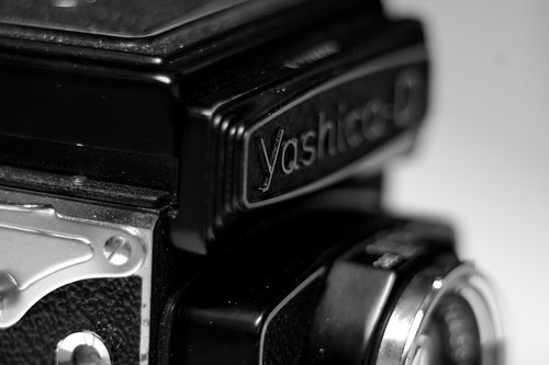Yashica D Nameplate