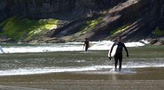 IMG_1151 (hiway99w) Tags: statepark oregon spring hiking surfing pacificocean oregoncoast oswaldweststatepark shortsandsbeach smugglercove tillamookcounty oregoncoasttrail