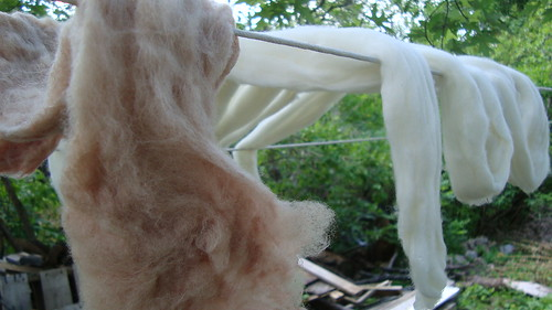Mulberry-dyed wool