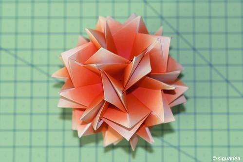 Rose de Sahara by Miyuki Kawamura