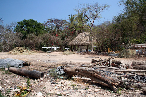 Puerto Vallarta - City and Tropical Jungle Escape Tour - See, Here's The Jungle. Enjoy.