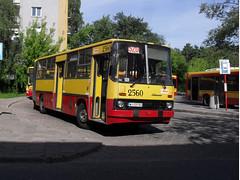 Ikarus 280.26 #2560 @ Marysin terminal station (goclawek) Tags: bus buses transport poland polska praga warsaw autobus warszawa 520 2007 ostrobramska ikarus wawer mza mzk ztm komunikacja marysin