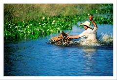 Pantanal - The last Eden (Valdemir Cunha) Tags: wild brazil horse bird nature water brasil landscape cowboy farm wildlife wilderness cavalo matogrosso pantanal wetland matogrossodosul fazenda peão pantaneiro wildplace