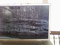 i brought a little bit of winter with me... (Mykl i am) Tags: winter white snow computer laptop gray hearthhill