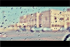 (` .) Tags: window car rain for bahrain drops nikon women university sweet royal honey d60 ruw aplusphoto
