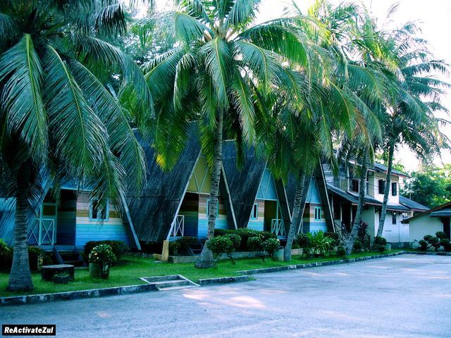 pokok-kelapa-menghiasi-resort