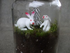 making terrariums with Diane (susanstars) Tags: trees plants me moss hula frog deer rabbits crafty masonjars terrariums dianegilleland recycledcrafty craftingforfun
