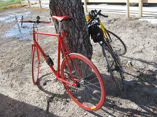 Ken's fixie bike (at CP5)