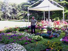 1 084 (florarte_arenzano) Tags: liguria arenzano mostramercato floricoltura villeegiardini maredigiardini