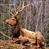 ~ The Boss ~ (ViaMoi) Tags: life wild canada nature canon natural wildlife antlers elk naturalist imagist digitalcameraclub 40d platinumphoto aplusphoto viamoi goldstaraward rubyphotographer 100commentgroup thenewselectbestni