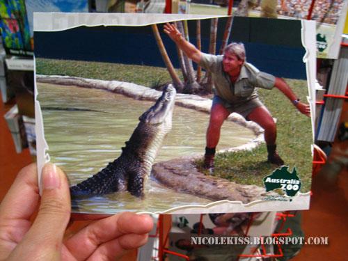 steve irwin postcard