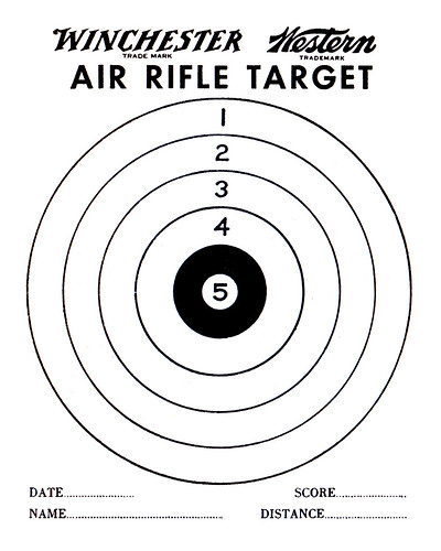 target. Air Rifle Shot Target