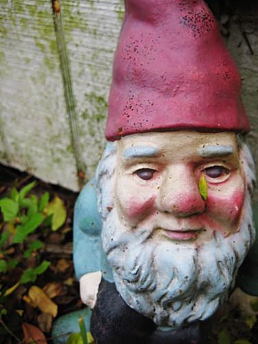 gnome alone.