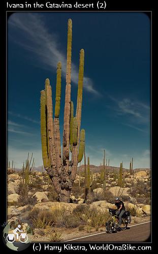 Ivana in the Catavina desert (2) por exposedplanet.