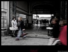 La Pescadera (El Mitico®) Tags: portugal market abril mercado viajes porto ao mes turismo año 2009 oporto mitico elmitico fotoaf tipofoto